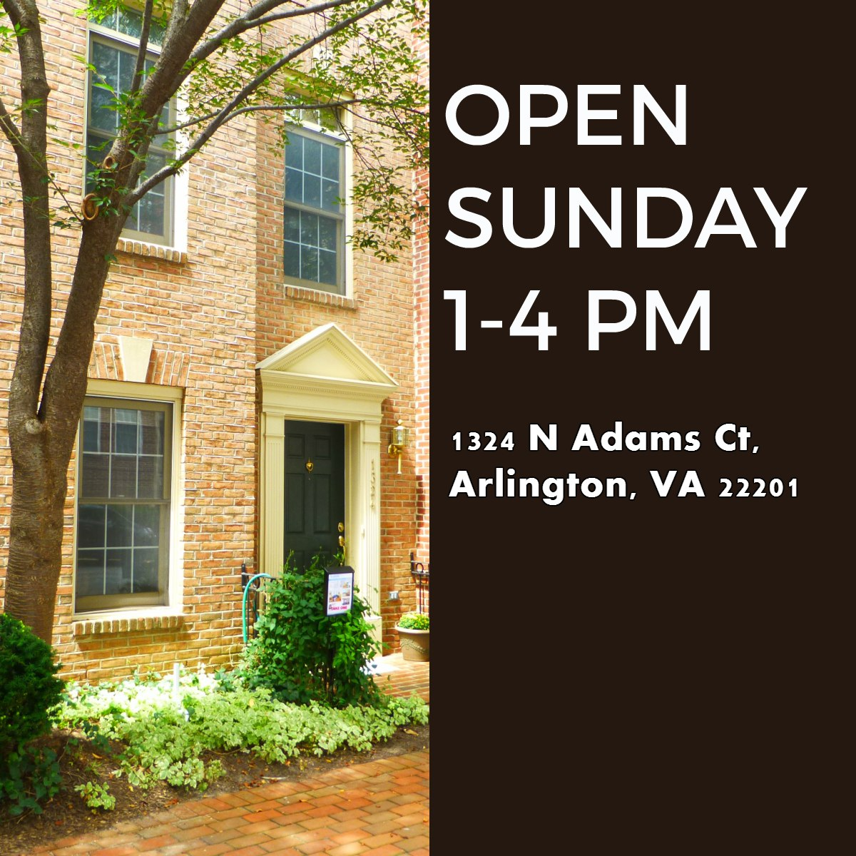 Arlington, VA OPEN SUNDAY  10/18/15!
